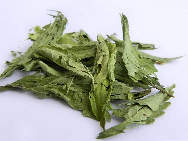 Стевия - высушенные листья