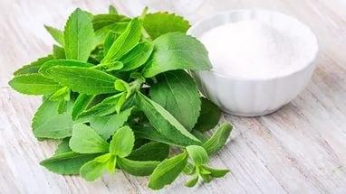 Листья стевии - лучший сахарозаменитель для диабетиков
